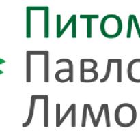 Где растет лавровый лист в России