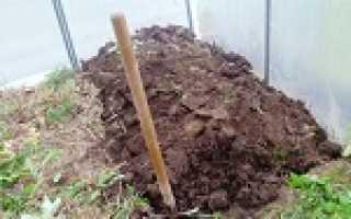 Медный купорос для обработки почвы в теплице