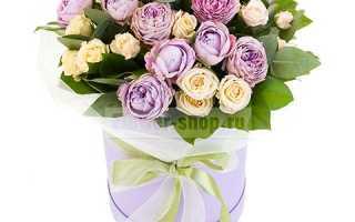 Цветы доброе утро