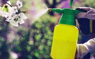 Инсектициды для сада перечень