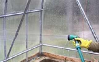 Подготовка почвы в теплице осенью под огурцы