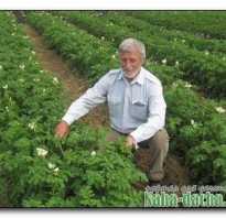 Рало для посадки картофеля своими руками