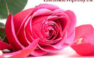 Что сделать чтобы розы долго стояли