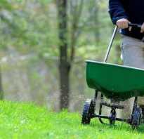 Чем подкормить газон осенью