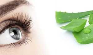 Лечение глаз алоэ в домашних условиях