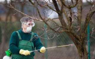 Чем опрыскивать яблони осенью от вредителей