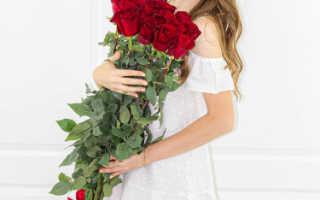 Высокие розы 2 метра