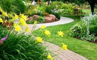 Неприхотливые декоративные кустарники для сада