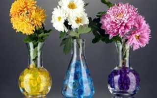 Хризантемы как сохранить букет