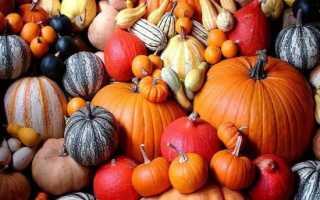 Украшения из тыквы на праздник осени
