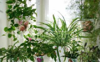 Полочки для цветов на подоконник