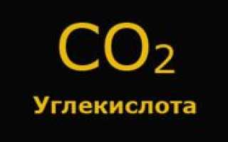 Углекислый газ для теплиц своими руками