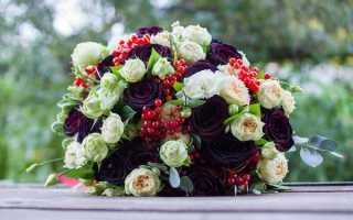 Темные розы