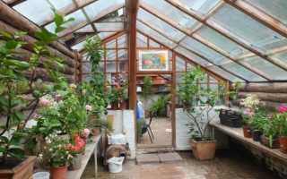 Подземная теплица для круглогодичного садоводства